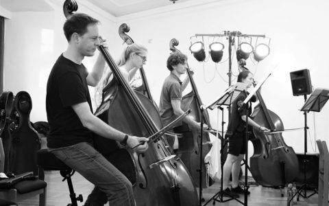 "Sommersemester 2019 - Fotoprojekt ""Das Orchester"": Kontrabässe"
